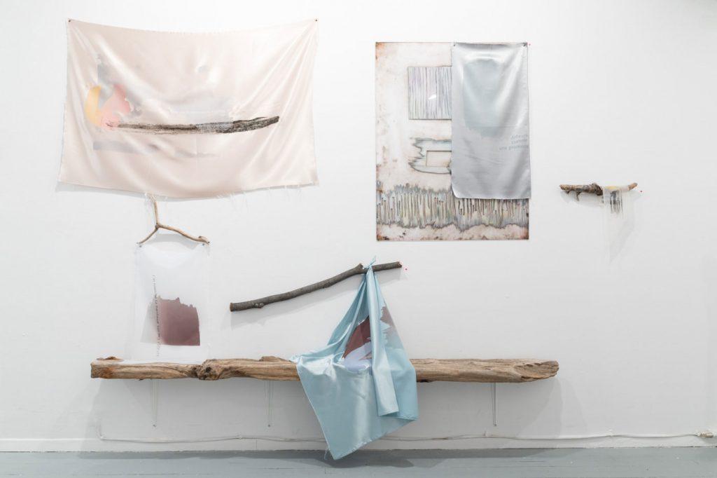 Geneviève Cadieux-Langlois - Art contextuel