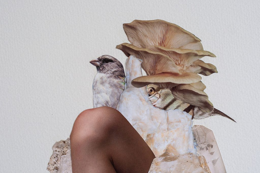 Janna Yotte - Collage