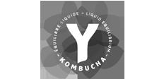 Kombucha - Équilibre liquide - Liquid equilibrium